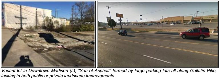 "Vacant lot in Downtown Madison (L); ""Sea of Asphalt"" formed by large parking lots all along Gallatin Pike, lacking in both public or private landscape improvements."